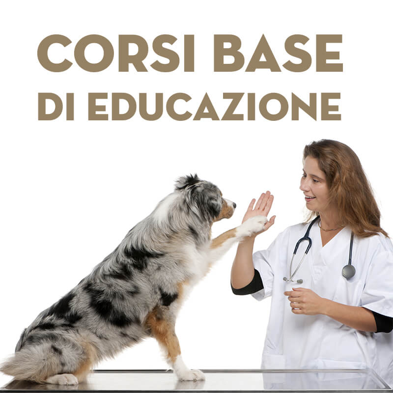 Campagnia social - Centro Cinofilo - Veteriari